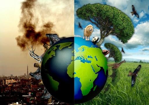 Chứng chỉ ISO giúp bảo vệ môi trường